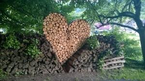 WP_20140511_sydänpuu