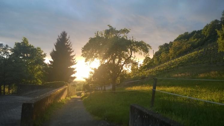 aurinkopolku